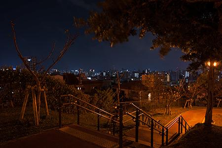 黄金森公園