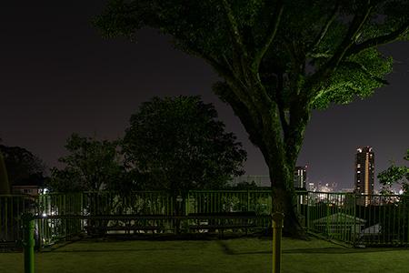 熊内台北公園の夜景