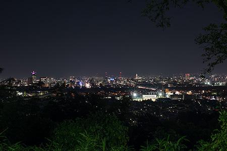 呉羽山公園 桜の広場展望台の夜景
