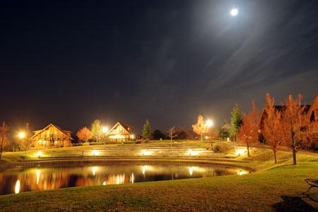 舞洲緑地シーサイドプロムナードの夜景