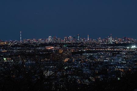 枡形山の夜景