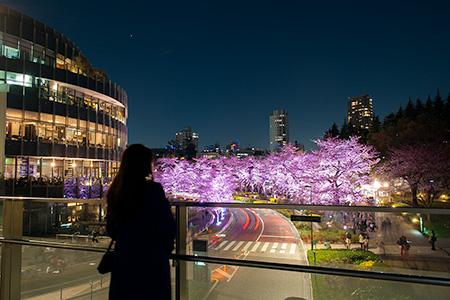 東京ミッドタウンの夜景