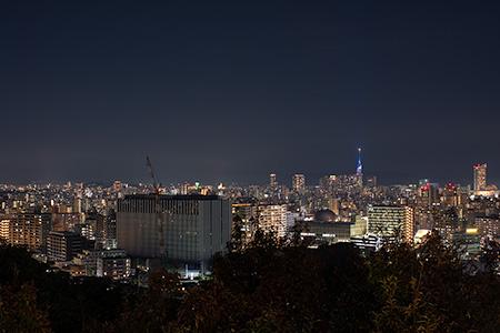 南公園の夜景