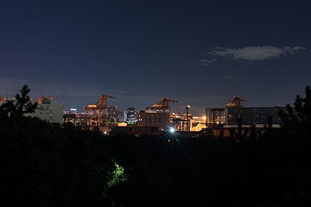みなとが丘ふ頭公園の夜景