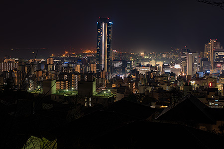 港みはらし台の夜景