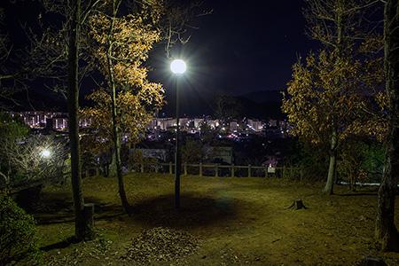 見瀬近隣公園の夜景