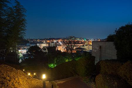 三ッ沢上町公園の夜景
