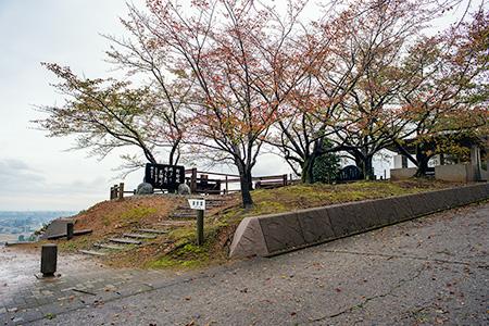 宮野運動公園 宮野山展望台の夜景