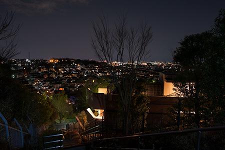 向原の夜景
