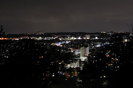 長野公園の夜景