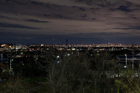 中池公園の夜景