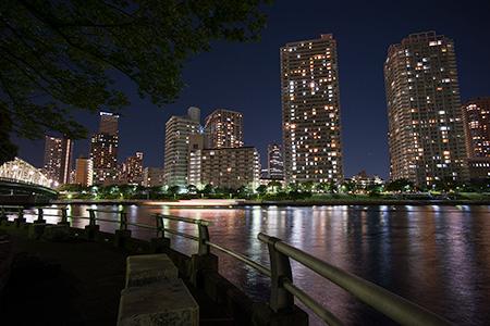 中の島公園の夜景