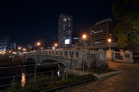 中之島公園 バラ園の夜景