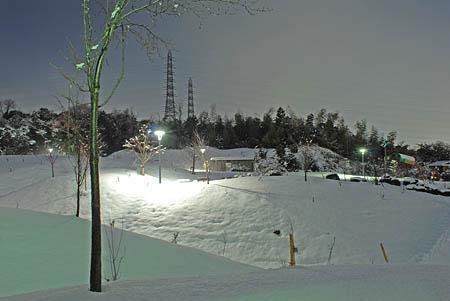南部丘陵公園の夜景