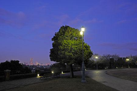 根岸森林公園の夜景