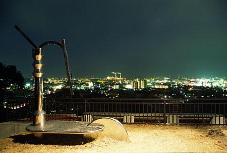 任坊山公園の夜景