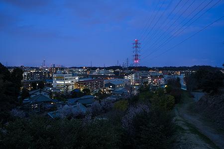 新羽丘陵公園の夜景