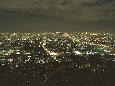 額田山展望台の夜景
