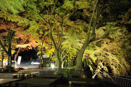 太平山 あづま家の夜景