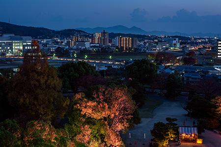岡山城 天守閣の夜景