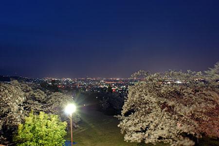 大法師公園の夜景