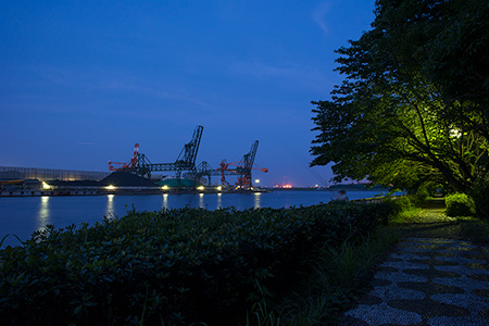 大川緑地の夜景