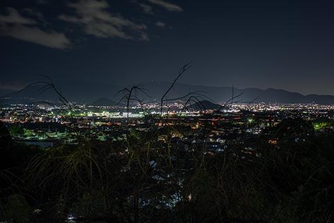 大美和の杜 展望台