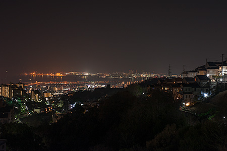 大月大橋の夜景