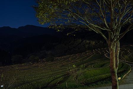大山千枚田の夜景