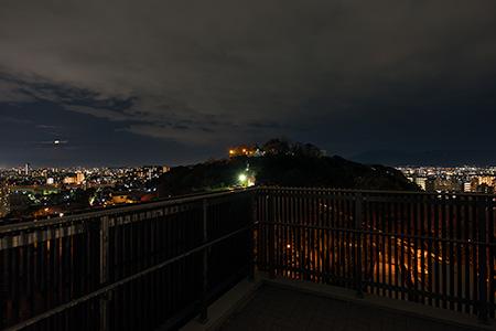 大山祗神社跡公園の夜景