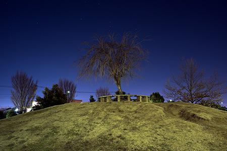 プリンスの丘公園の夜景
