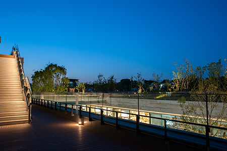 二子玉川ライズ タワーオフィス アネックスの夜景