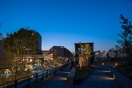 二子玉川ライズ ルーフガーデン菜園広場の夜景