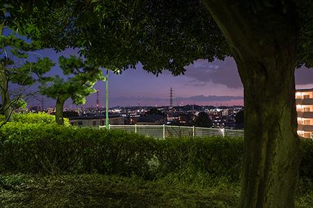 夢見ヶ崎公園の夜景