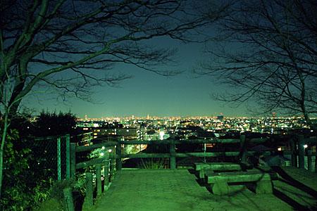 鷺沼北公園の夜景