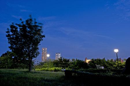 西郷山公園の夜景