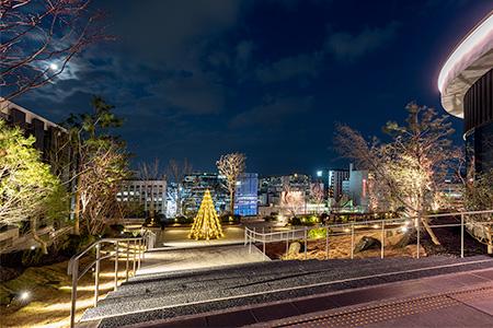 サクラマチクマモト 屋上ガーデンの夜景