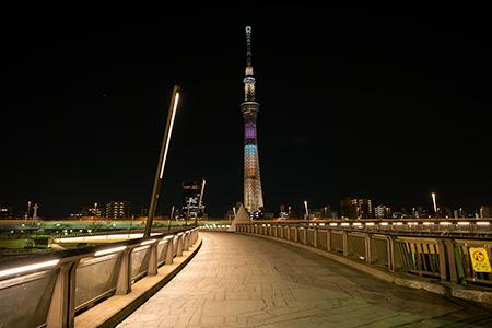 桜橋の夜景