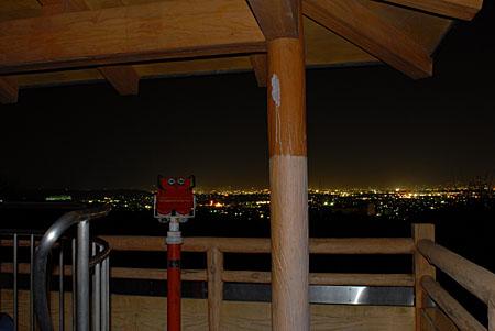 さくら山展望台の夜景