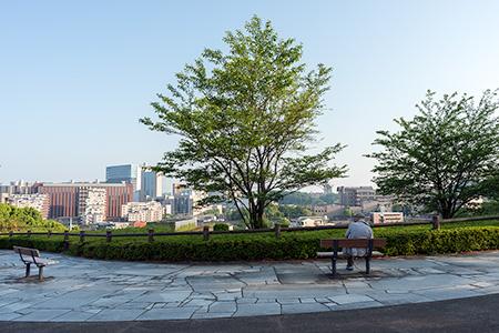 山王下緑地 展望広場の夜景