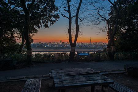 里見公園の夜景