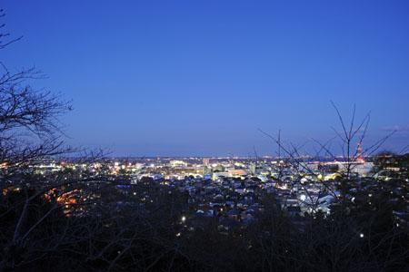佐原公園の夜景