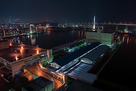 鮮魚市場市場会館 展望プラザの夜景
