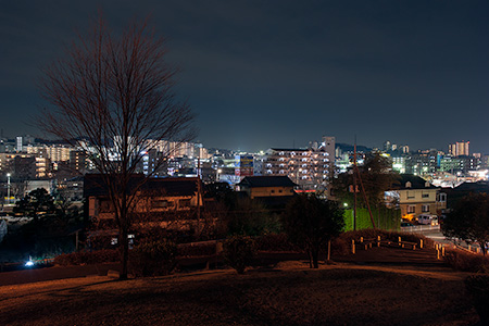 芝原公園の夜景