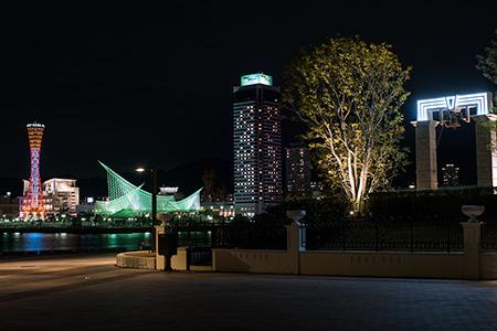 新港第一突堤緑地の夜景