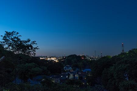 獅子ケ谷市民の森の夜景