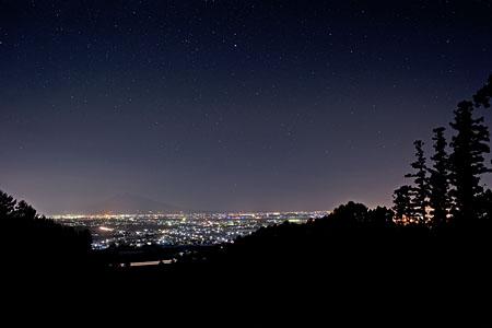 自然の森の夜景