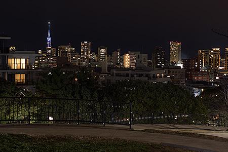 祖原公園の夜景