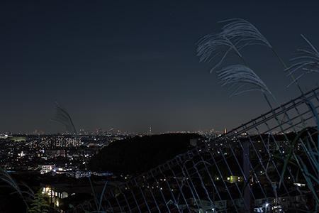 菅馬場の夜景
