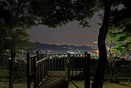 水道山公園の夜景